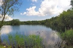 Features Galore, Bantons Lake - Wyreside Lakes Fishery