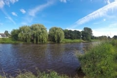 Barbel, Chub, Carp in this section of the River Ribble