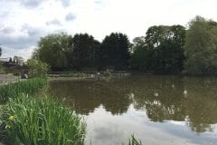Turbary House Nursery Fishing Whitestake Preston